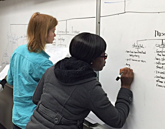 Two students write on white board