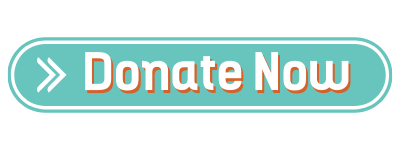 donate to the international institute of minnesota